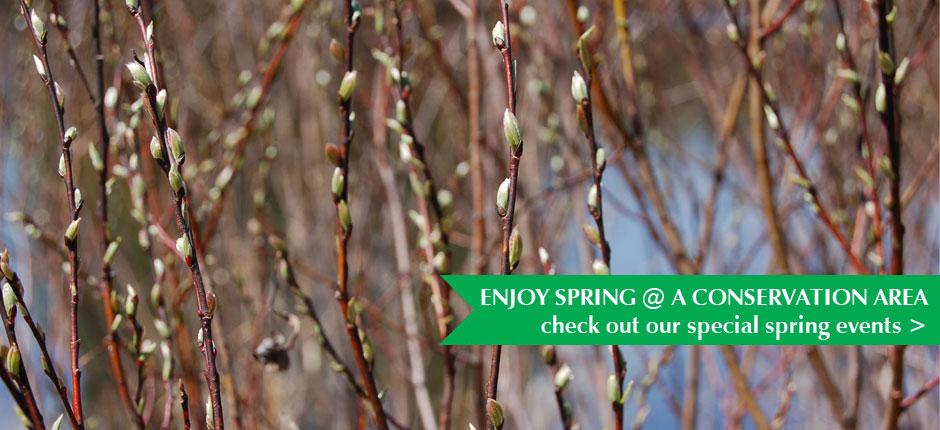 CRCA spring event calendar