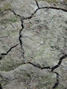 low water - cracked soil