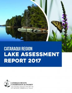 Lake Assessment Report Cover
