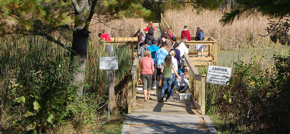 School group on Little Cataraqui Creek CA boardwalk