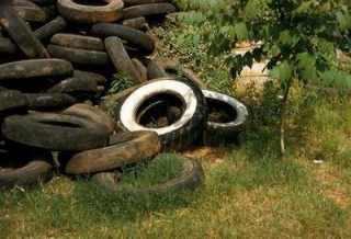 Pile of tire with stagnant water.