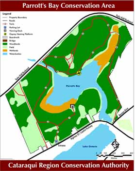 Parrott's Bay trail map