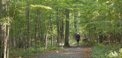 Hiker at Lemoie Point Conservation Area